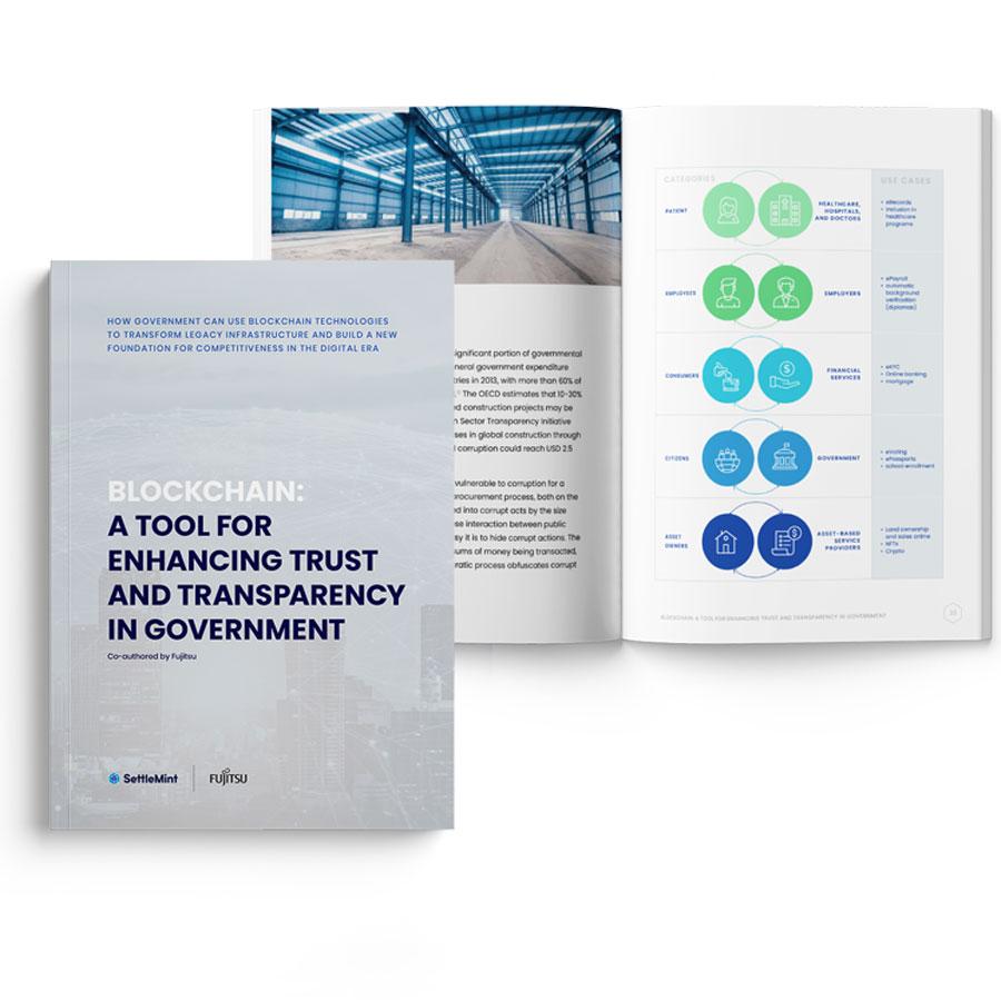 minibook-government